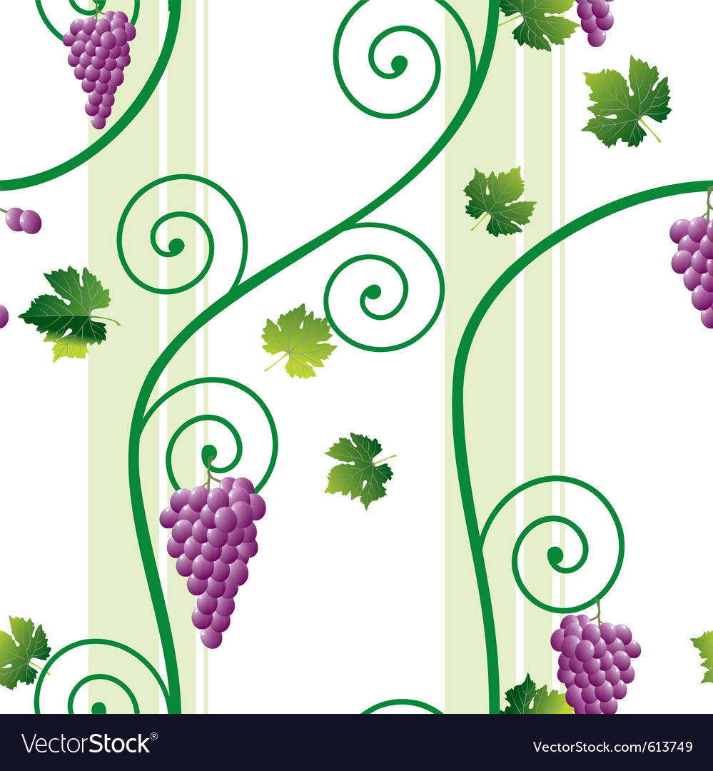 Grape vine pattern vector | Price: 1 Credit (USD $1)
