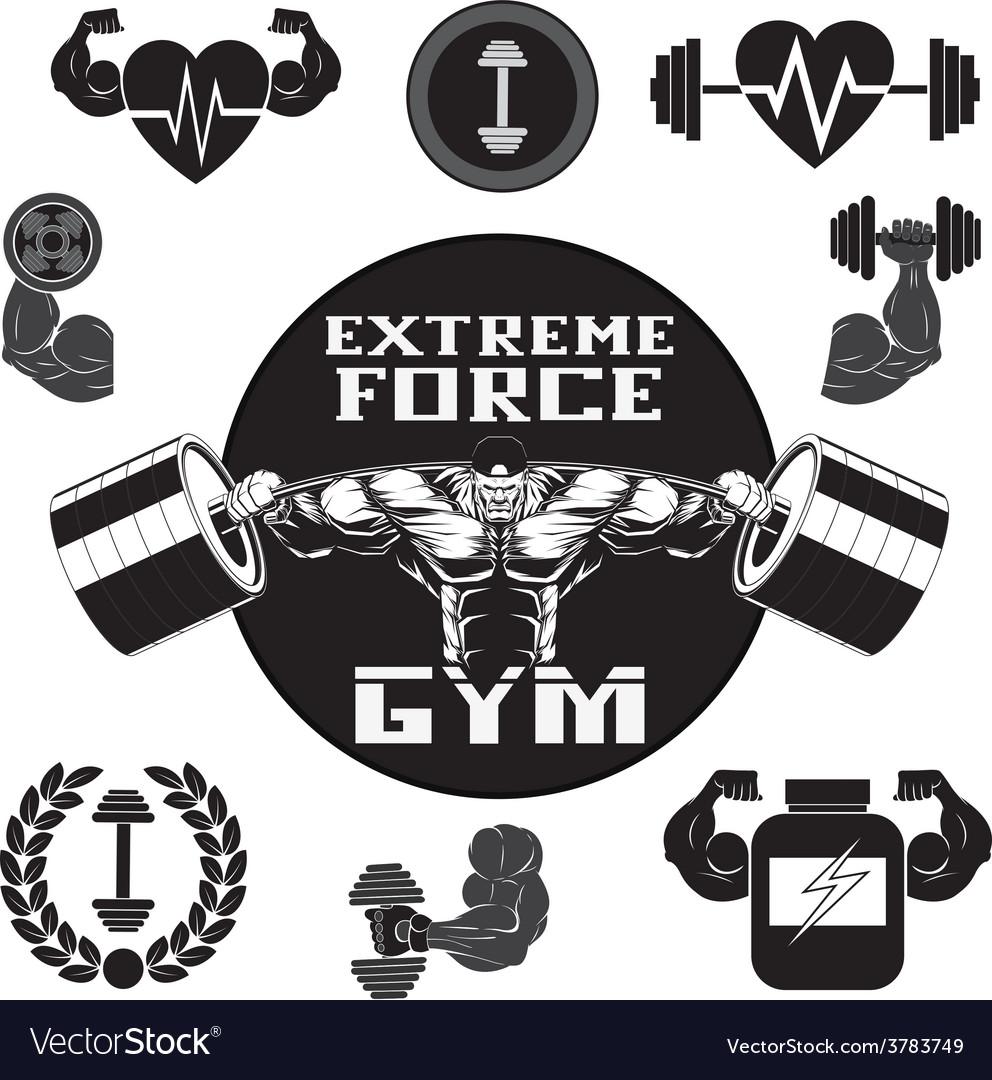 Set gym vector   Price: 1 Credit (USD $1)