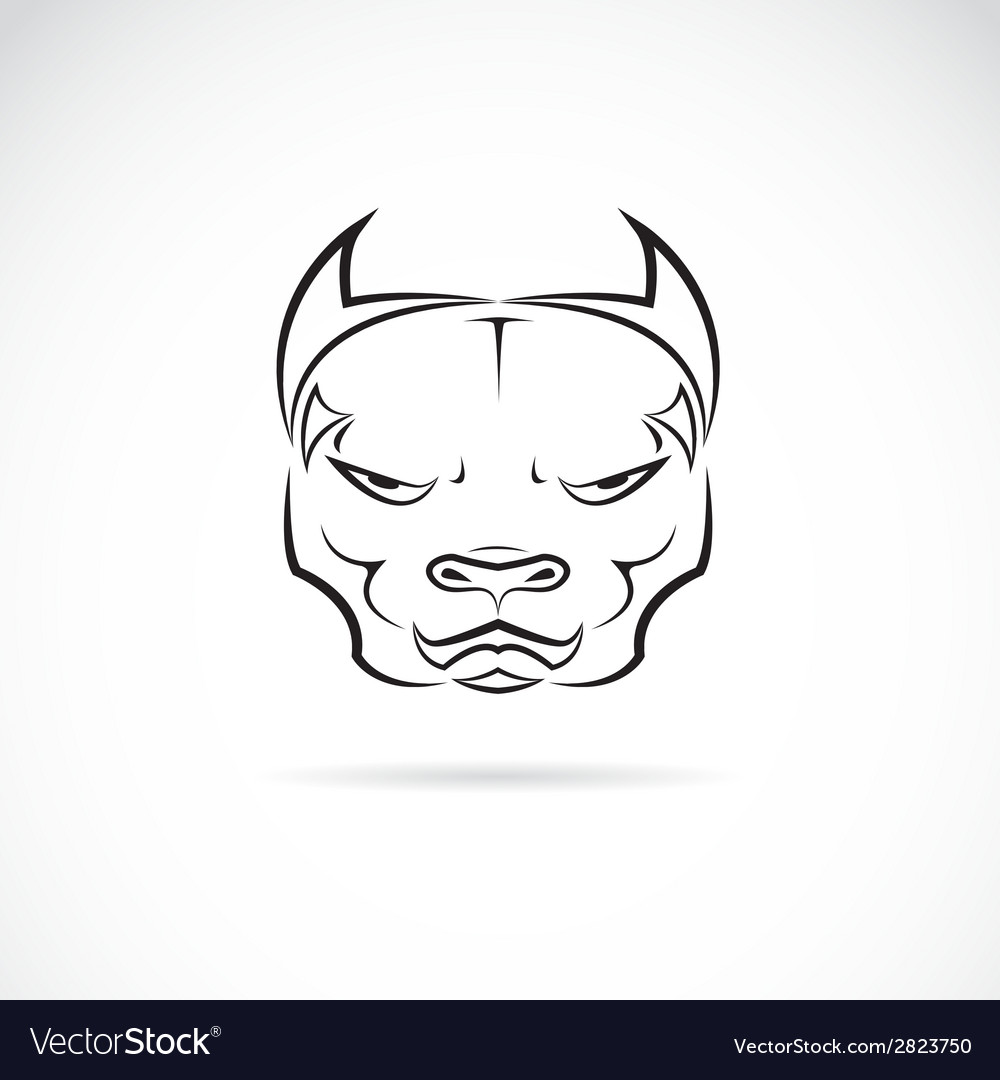 Image of a dog pitbull head vector | Price: 1 Credit (USD $1)