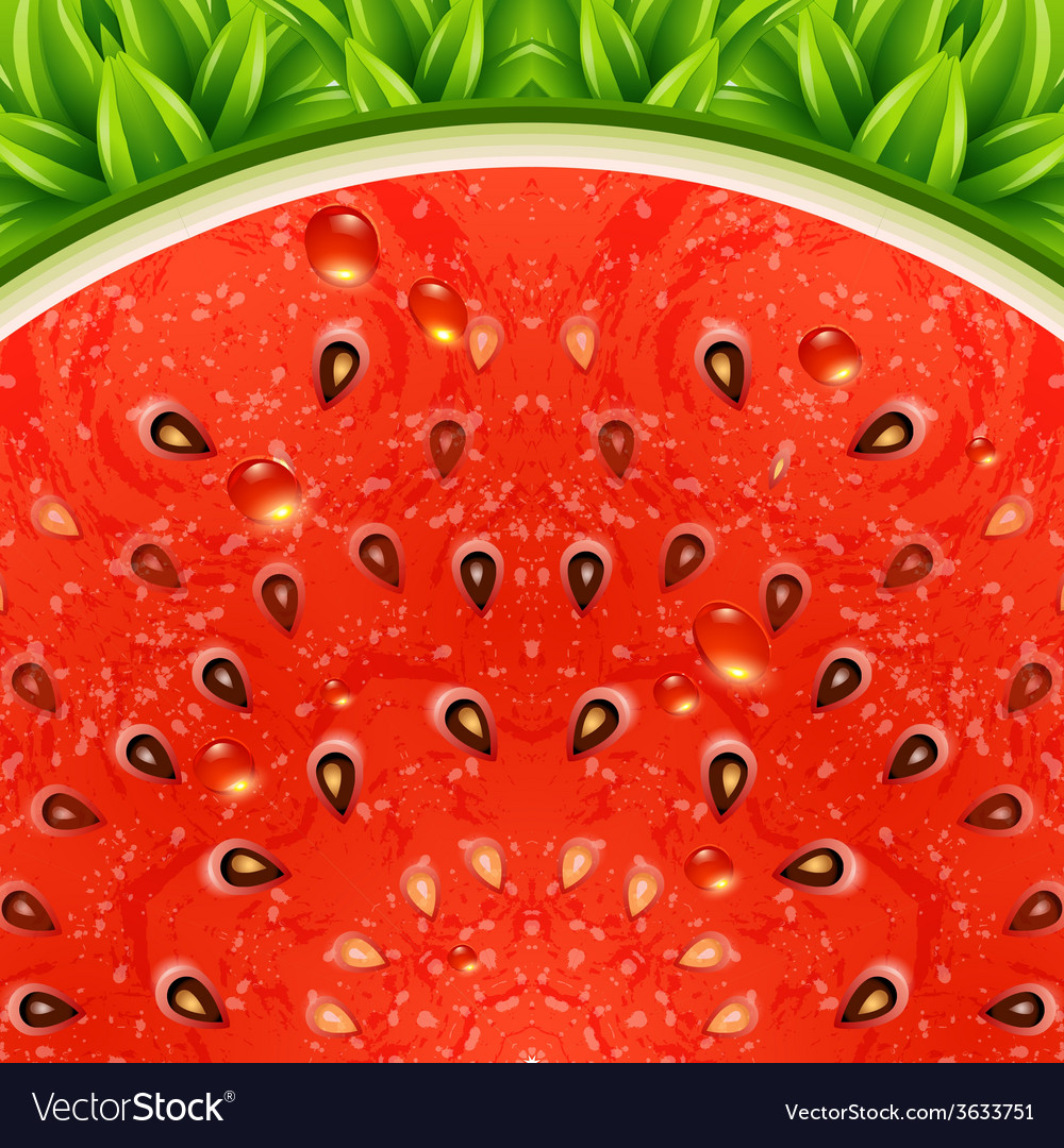 Optical watermelon background pattern vector | Price: 1 Credit (USD $1)