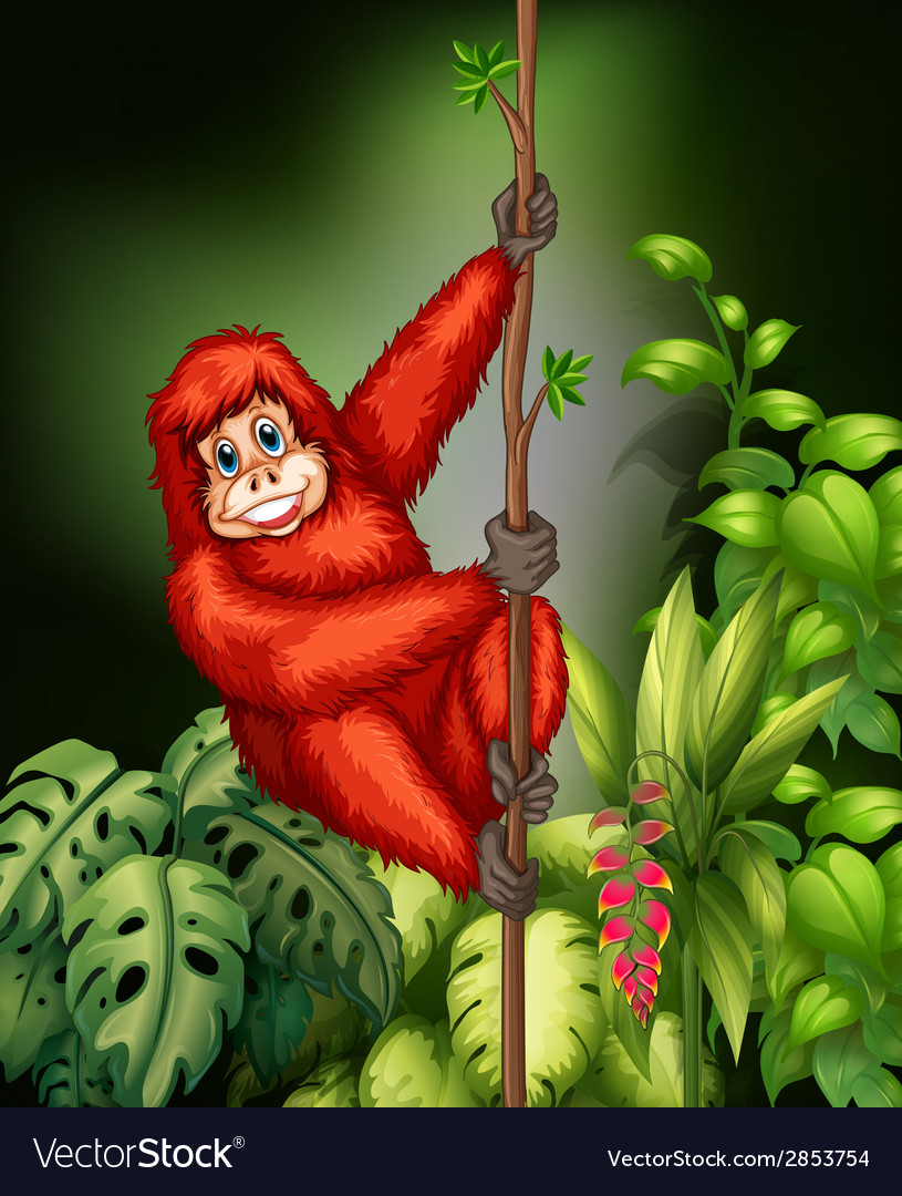 Monkey in jungle vector | Price: 3 Credit (USD $3)