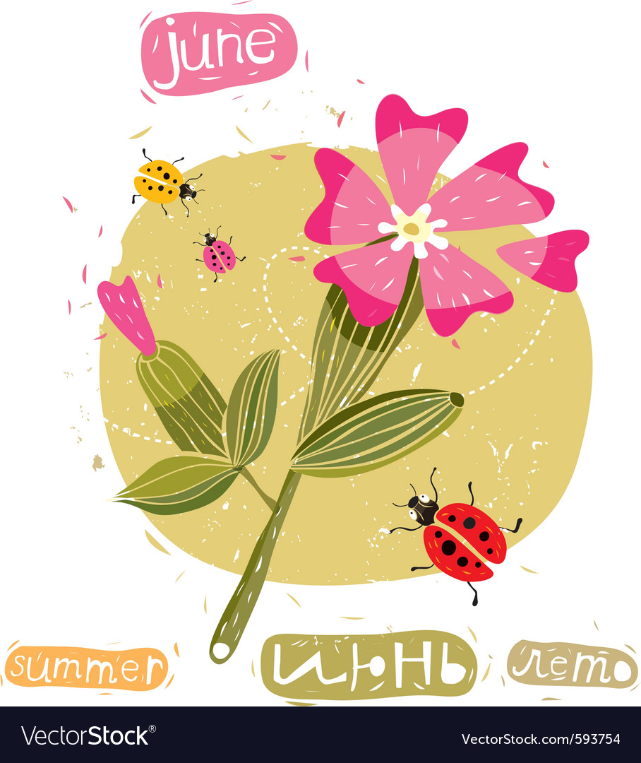 Summer flowers and bugs vector | Price: 1 Credit (USD $1)