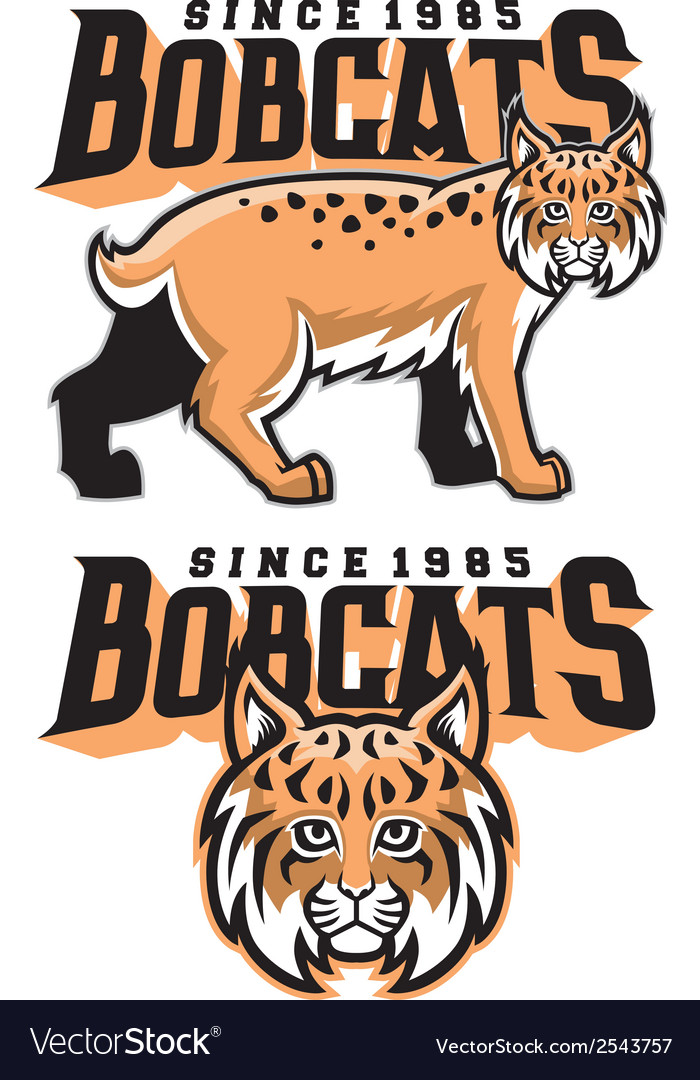 Bobcat mascot vector | Price: 1 Credit (USD $1)