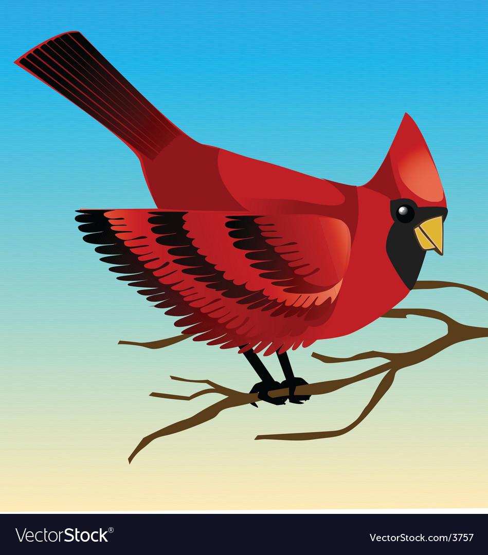 Redbird vector