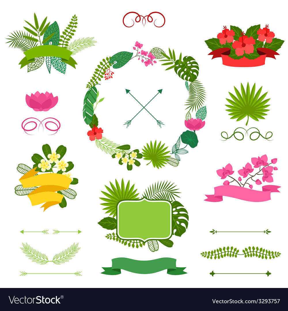 Set of tropical plants wreath ribbons and labels vector