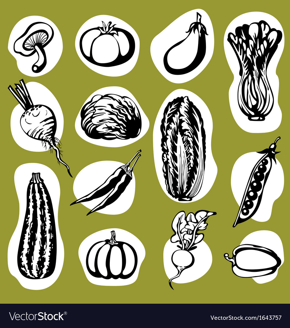 Various vegetables set vector | Price: 1 Credit (USD $1)