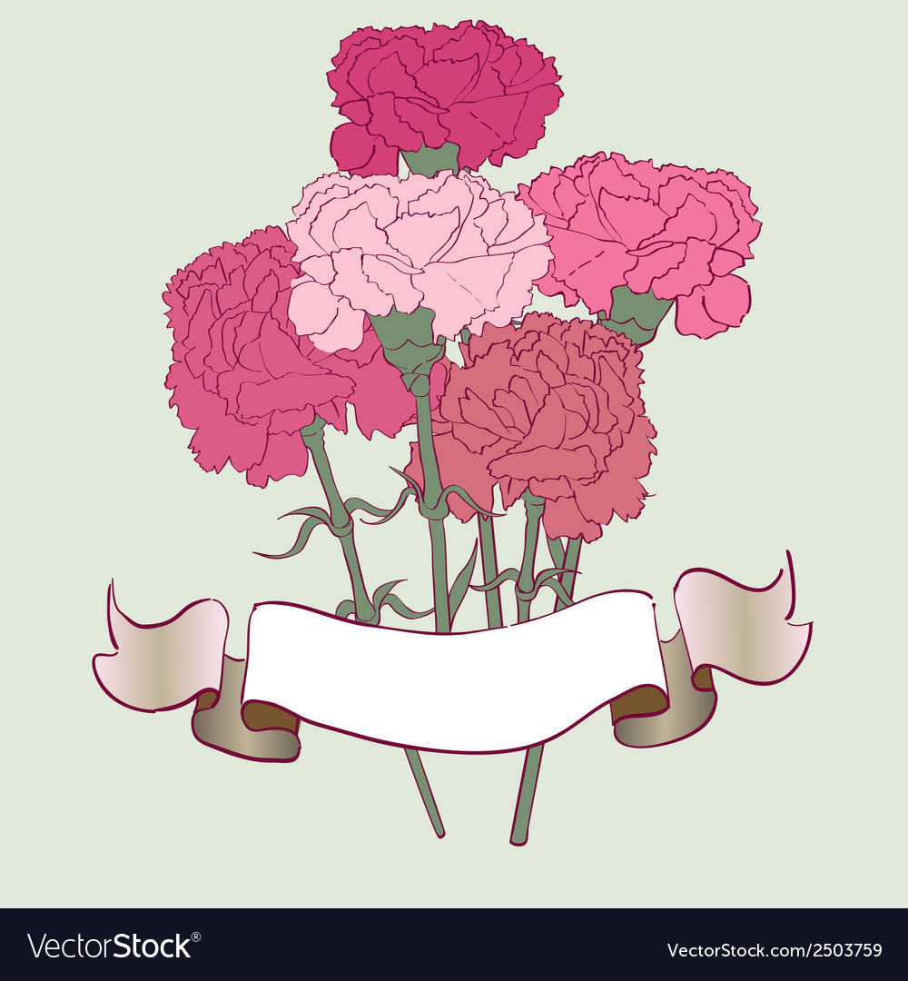 Carnation card vector | Price: 1 Credit (USD $1)