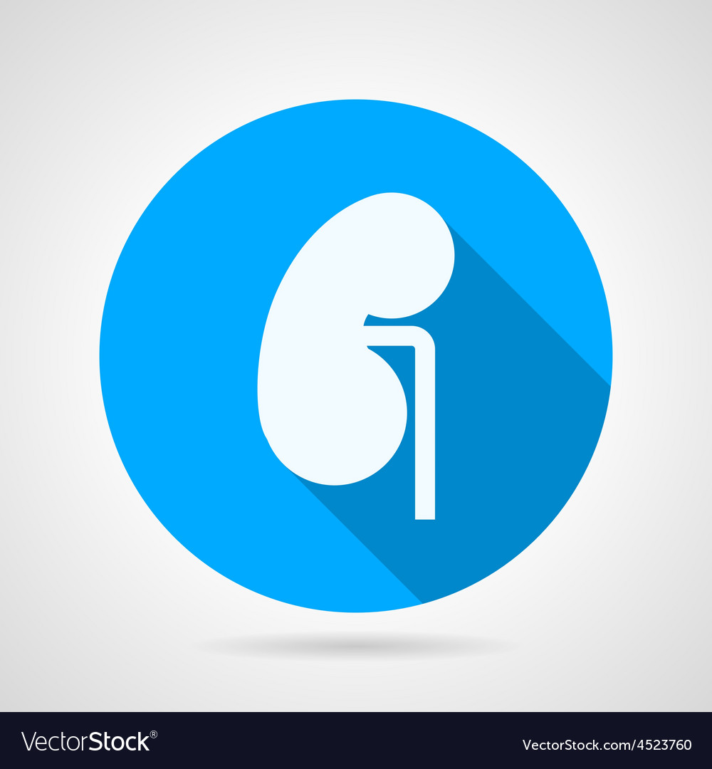 Round icon for nephrology vector | Price: 1 Credit (USD $1)