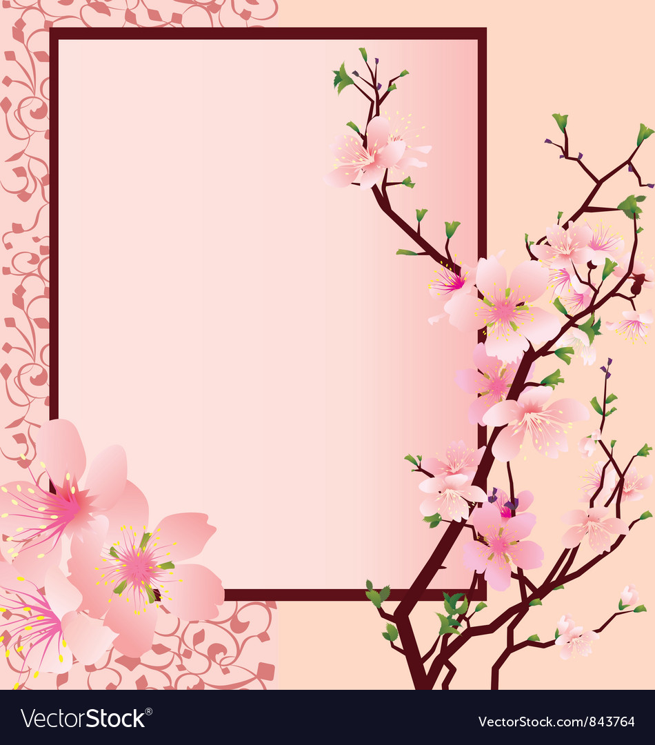 Sakura flowers vector | Price: 1 Credit (USD $1)