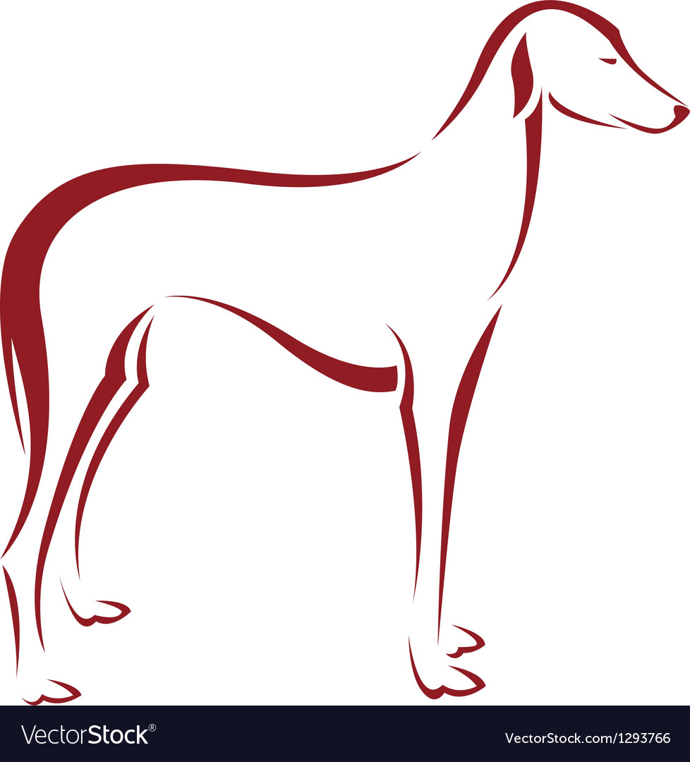 Dog azawakh vector | Price: 1 Credit (USD $1)