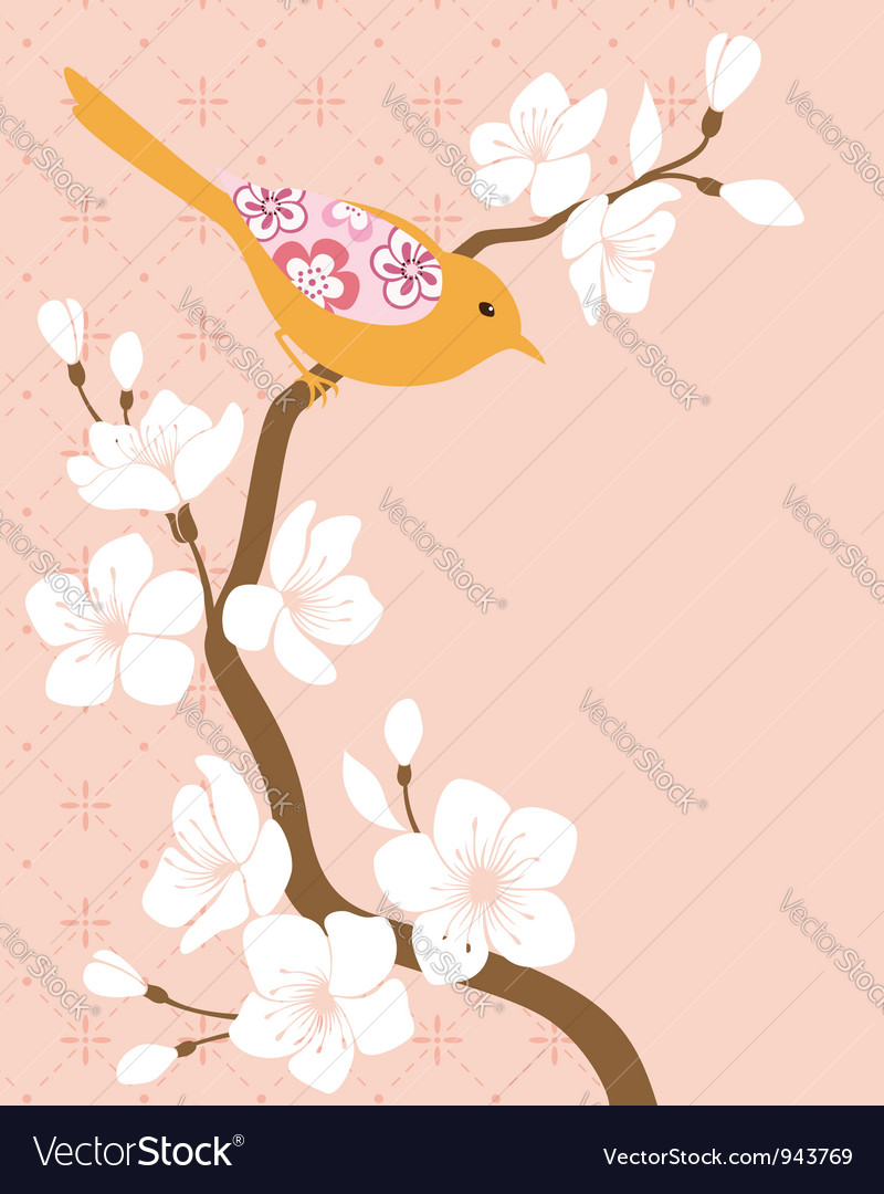 Blossom cherry branch 2 vector | Price: 1 Credit (USD $1)