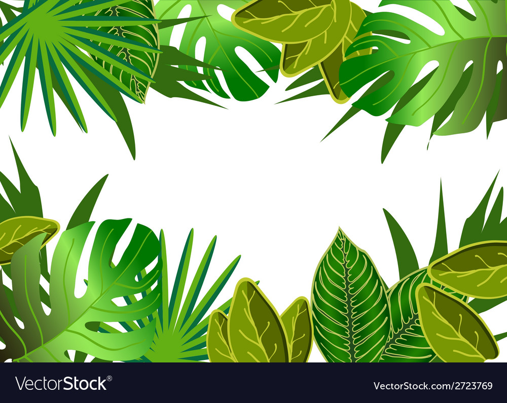 Tropical green leaves vector | Price: 1 Credit (USD $1)