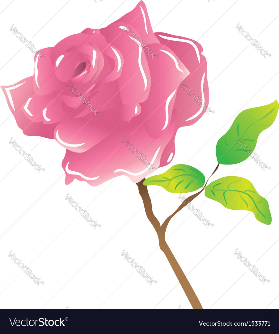 A stem pink rose on white vector | Price: 1 Credit (USD $1)