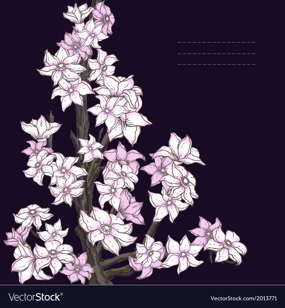 Branch of hand drawn cherry blossom on the dark vector | Price: 1 Credit (USD $1)