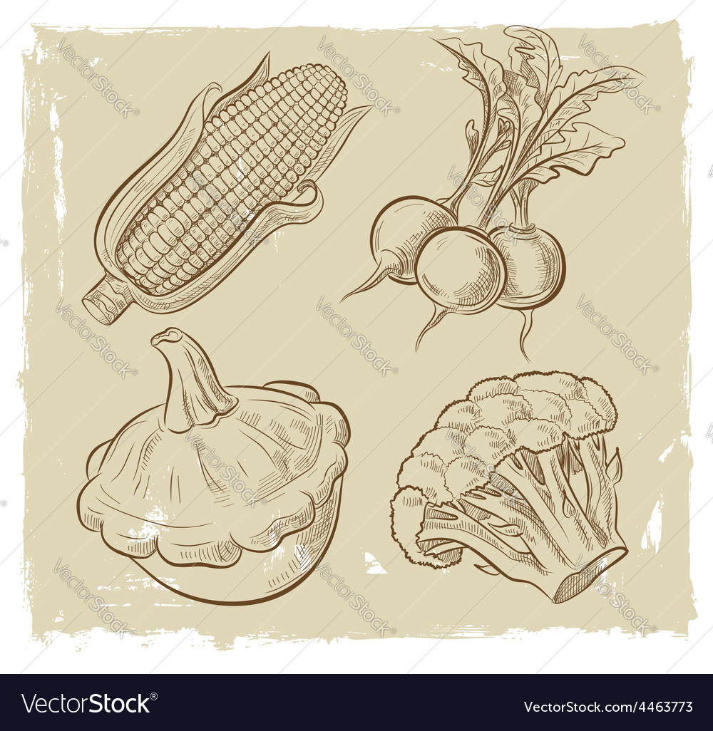 Picture of vegetables vector | Price: 1 Credit (USD $1)