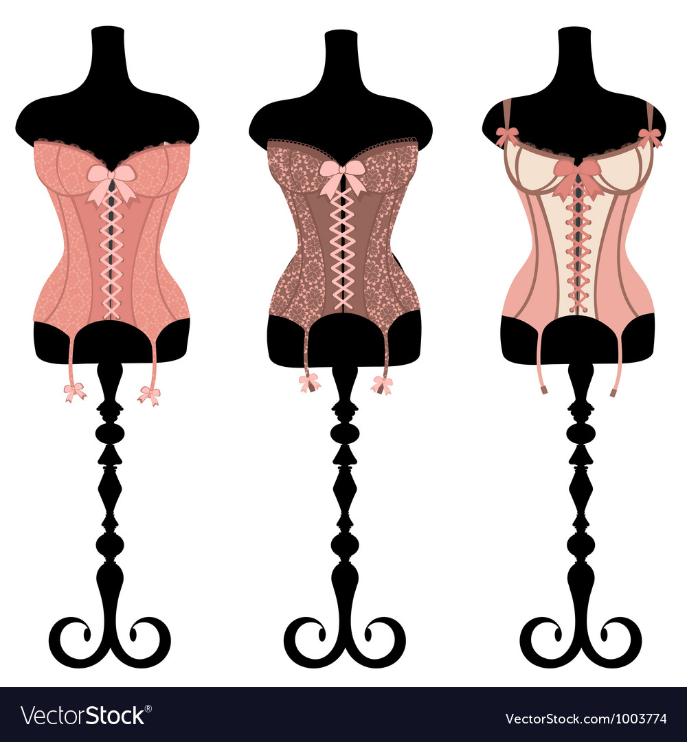 Vintage corsets set vector | Price: 1 Credit (USD $1)