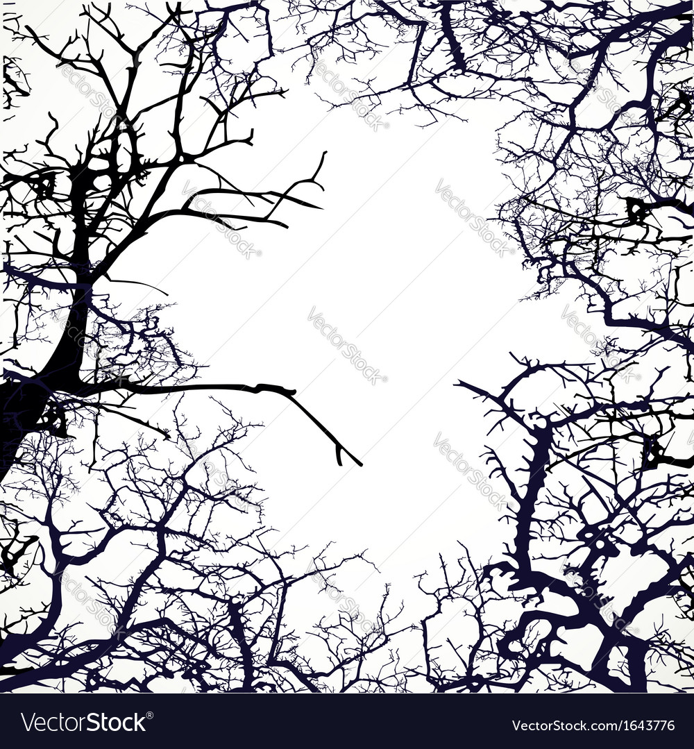 Frame from silhouettes of bare branches of trees vector | Price: 1 Credit (USD $1)