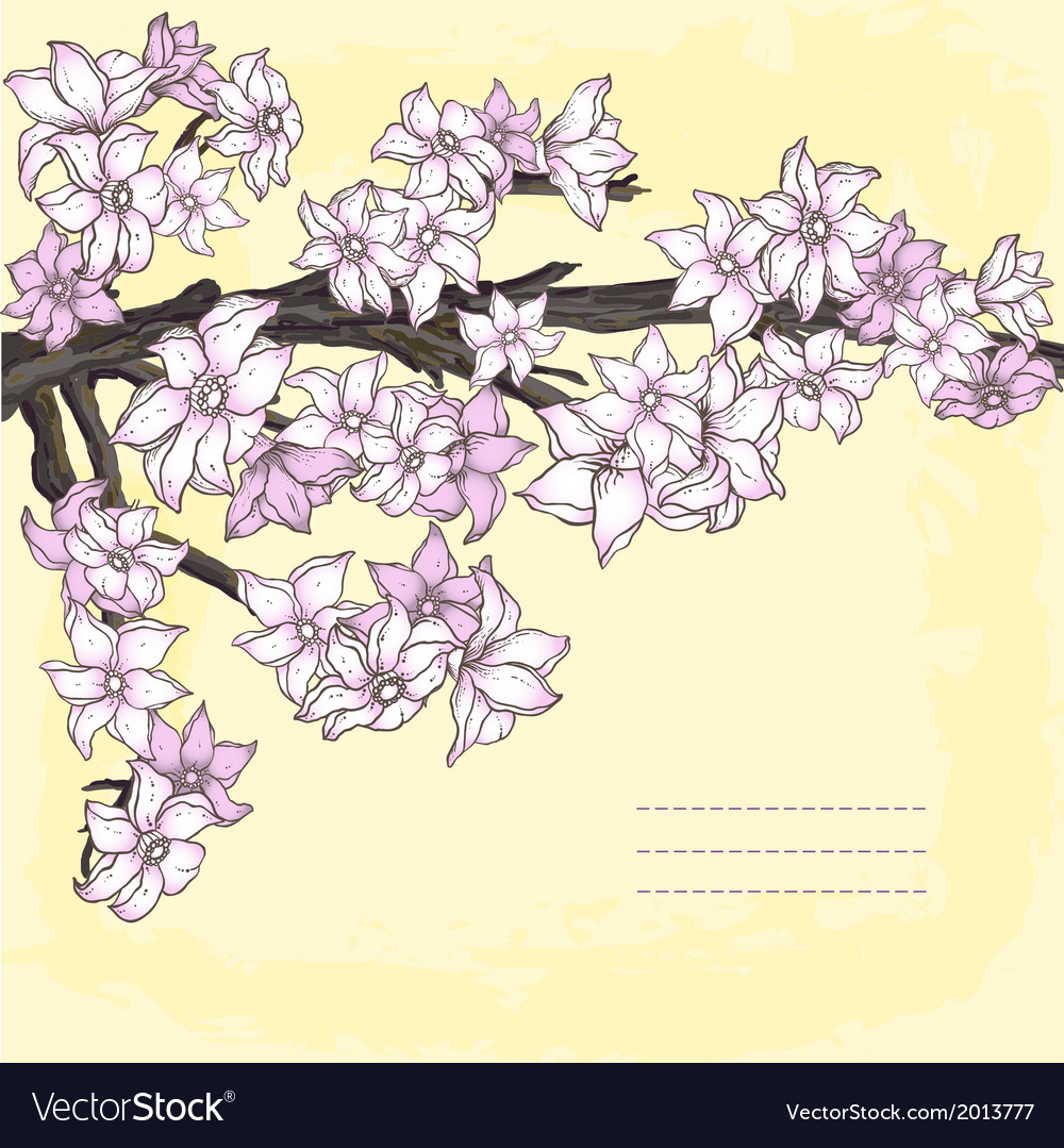 Branch of hand drawn cherry blossom vector | Price: 1 Credit (USD $1)