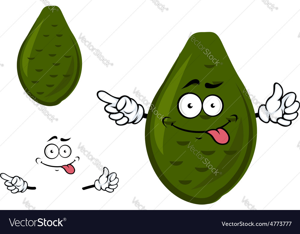 Ripe green avocado fruit cartoon character vector | Price: 1 Credit (USD $1)