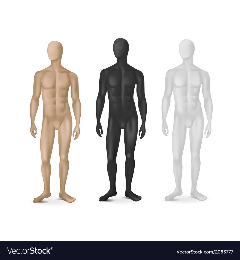 Set of three male mannequins vector | Price: 1 Credit (USD $1)