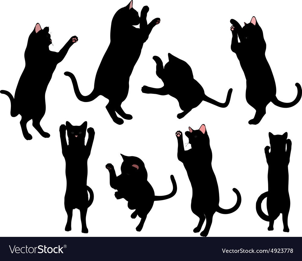 Cat silhouette in boxing pose vector