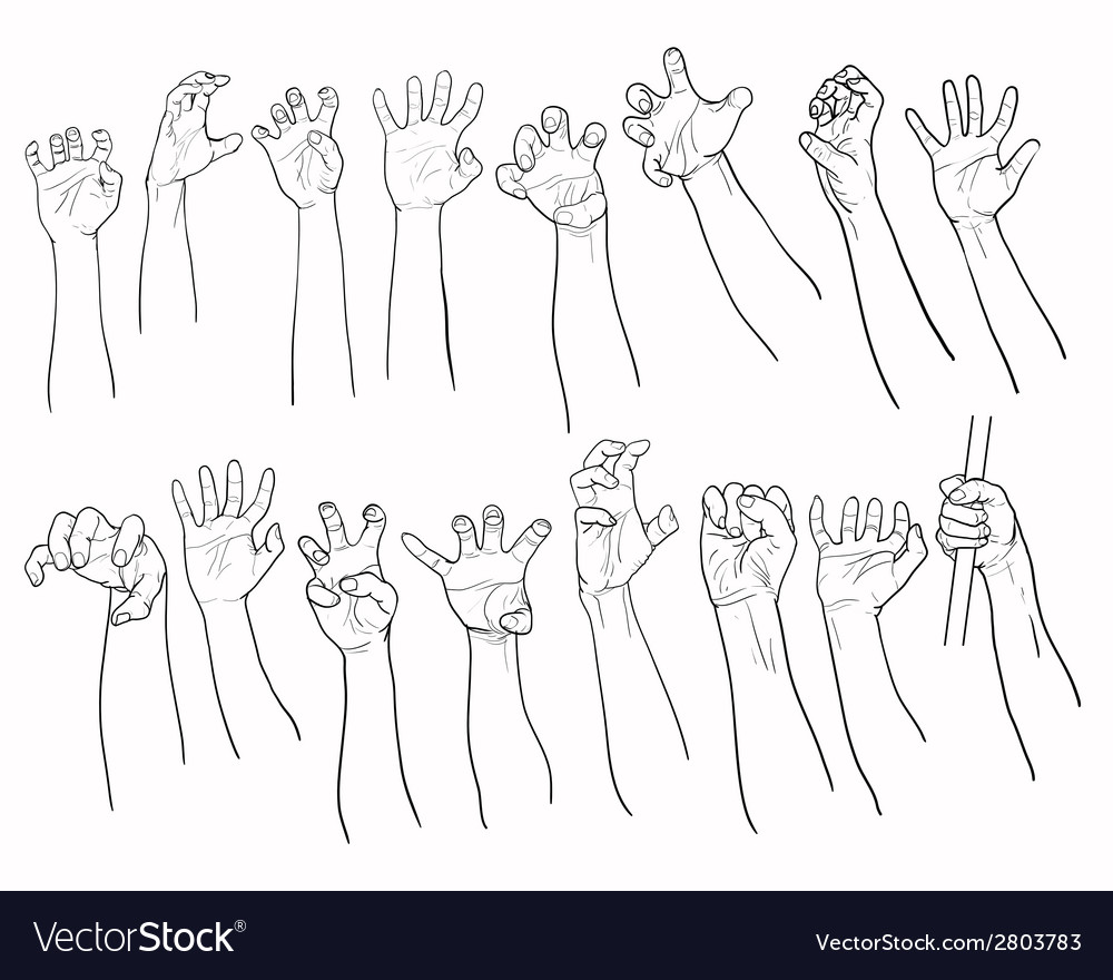 Set of hands in many gesture vector | Price: 1 Credit (USD $1)