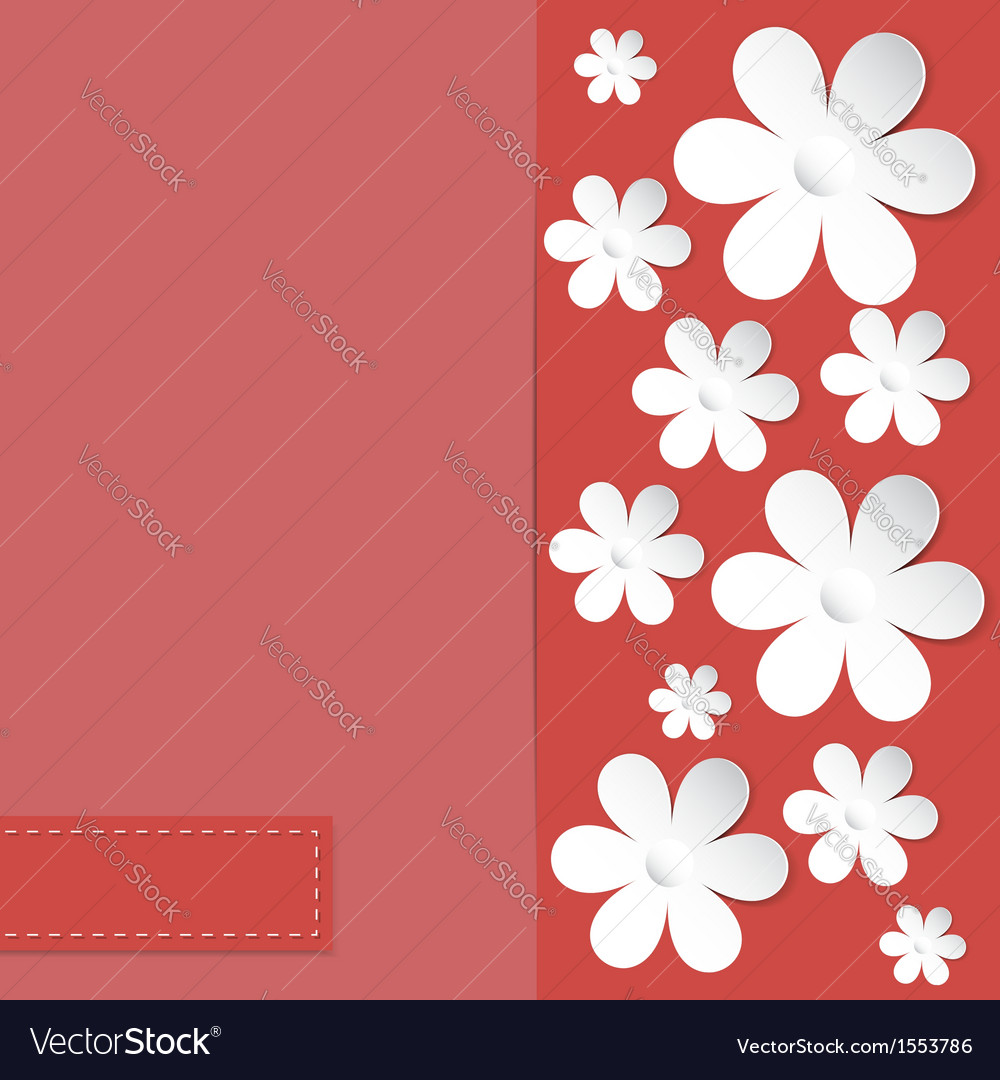 Camomile coral background vector | Price: 1 Credit (USD $1)