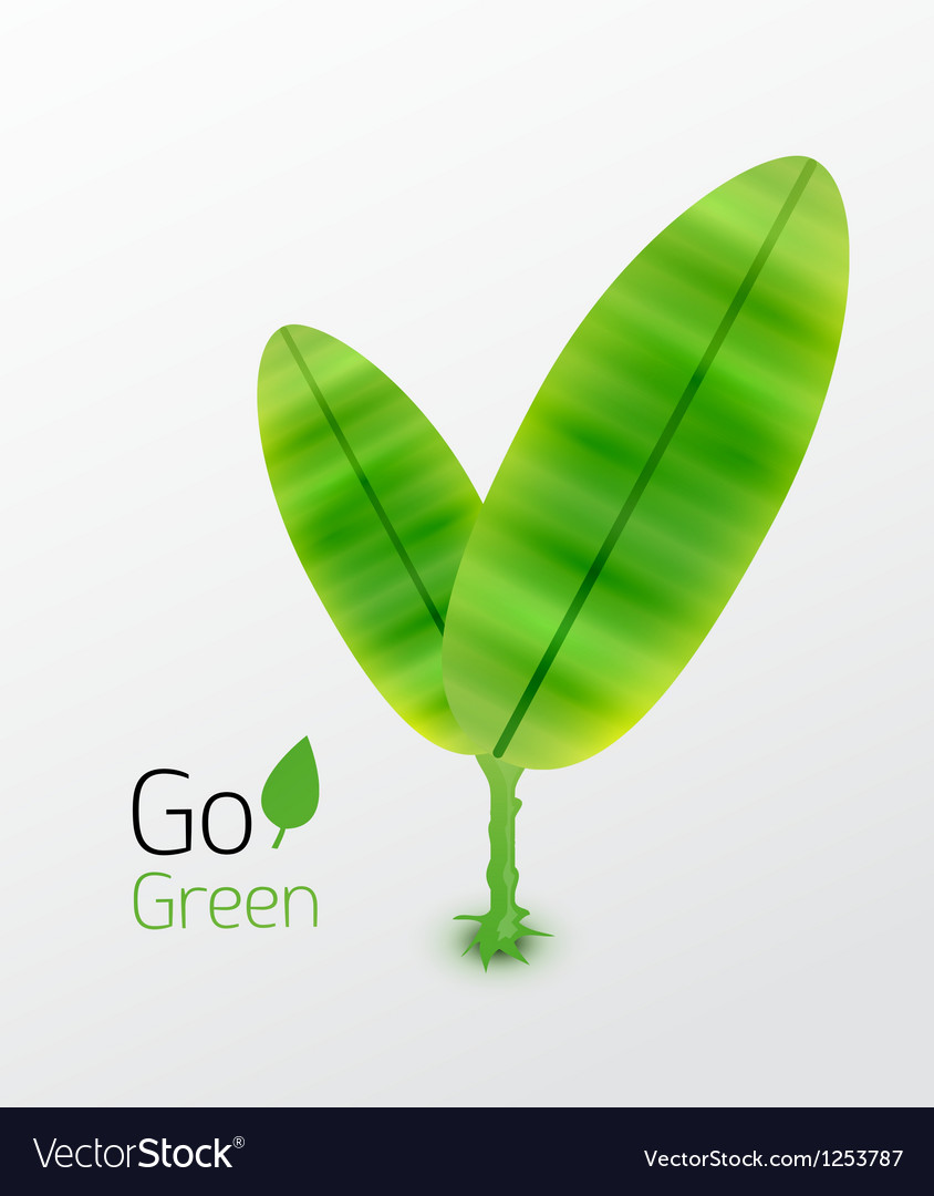 Green plant with leaves nature concept vector | Price: 1 Credit (USD $1)