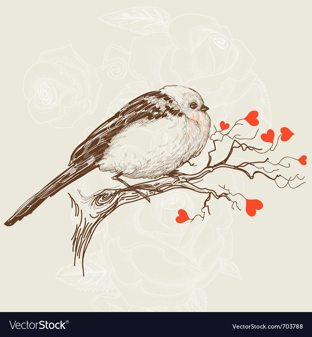 Love bird vector | Price: 1 Credit (USD $1)