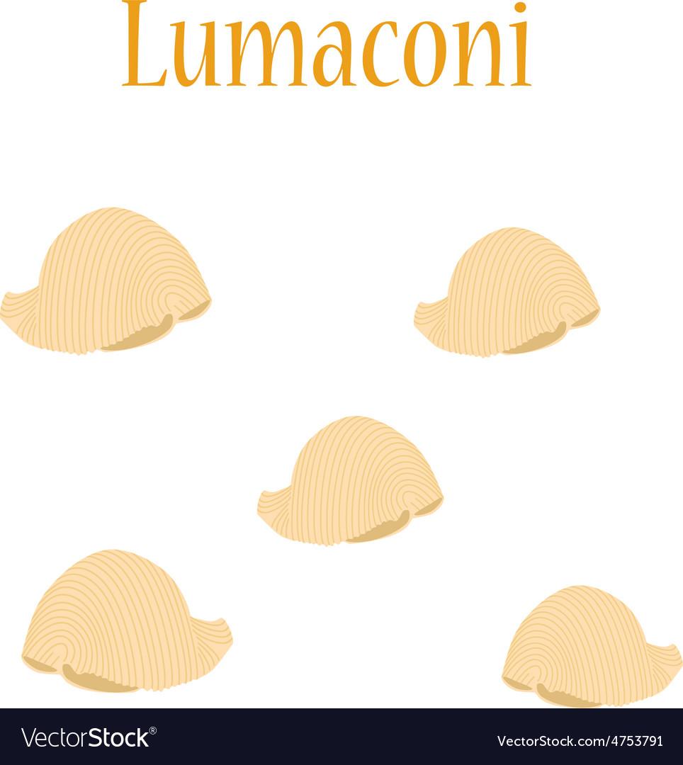 Lumaconi pasta vector | Price: 1 Credit (USD $1)