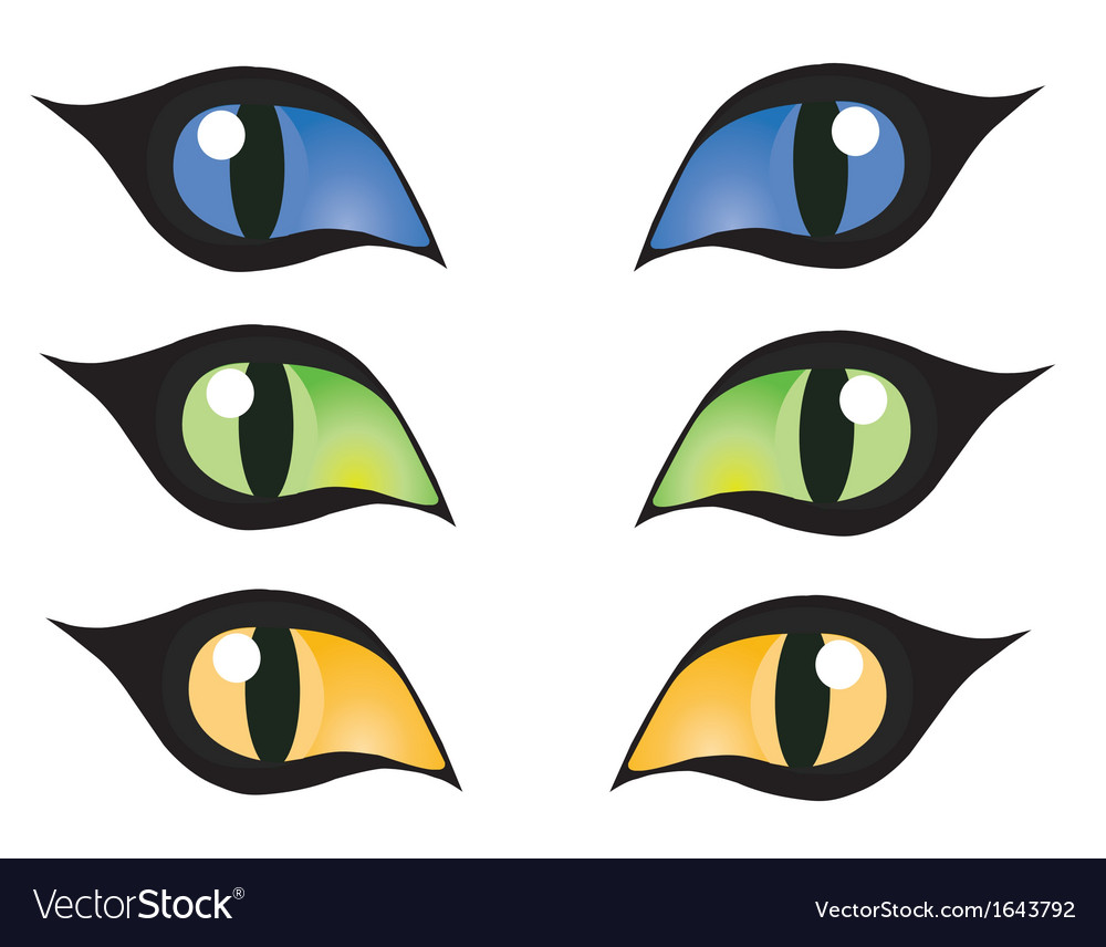 Cats eye vector | Price: 1 Credit (USD $1)