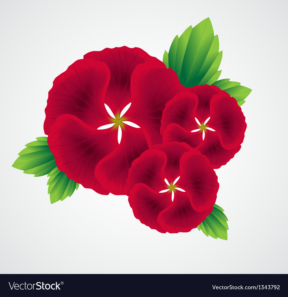 With flower bouquet on white background vector | Price: 1 Credit (USD $1)
