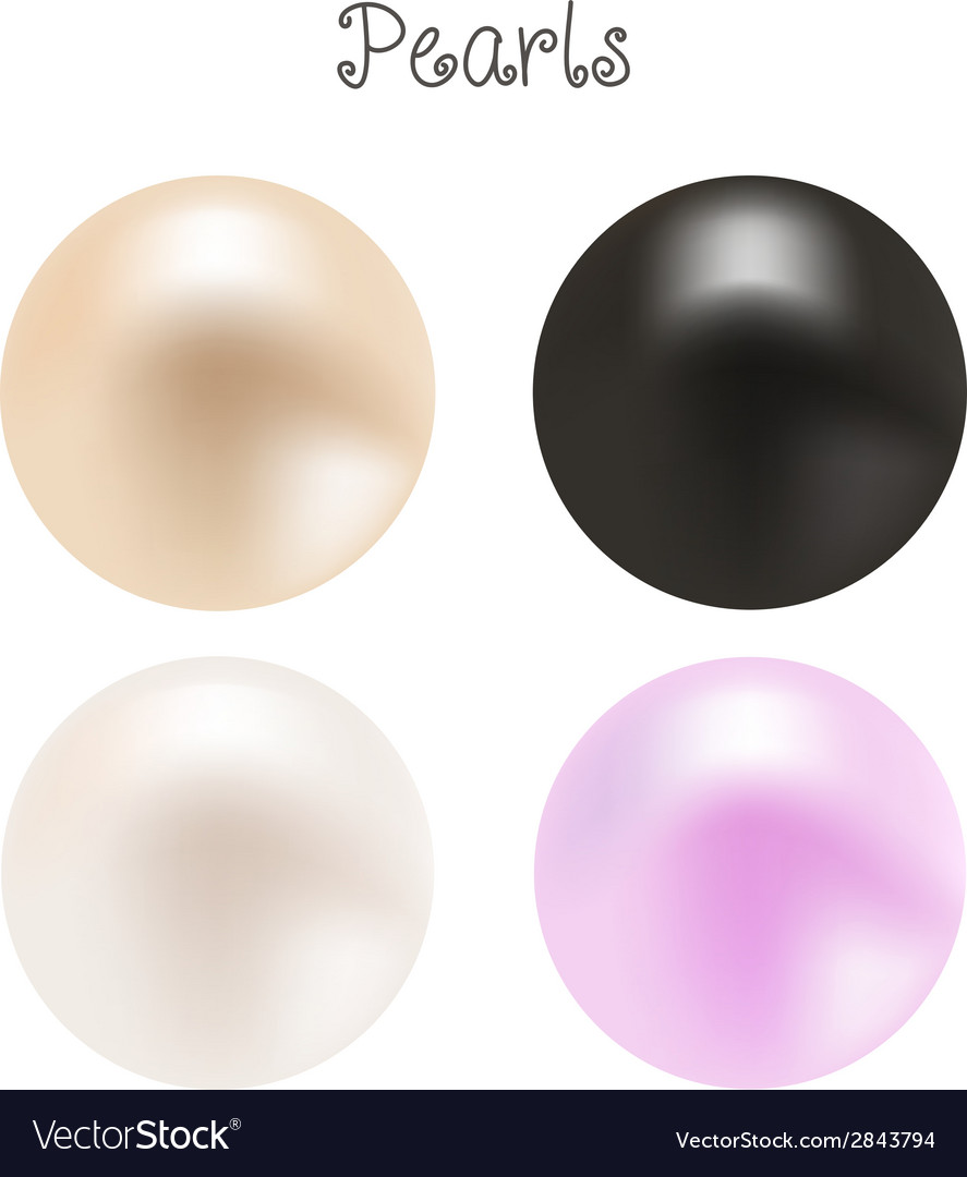 A set of pearls vector | Price: 1 Credit (USD $1)