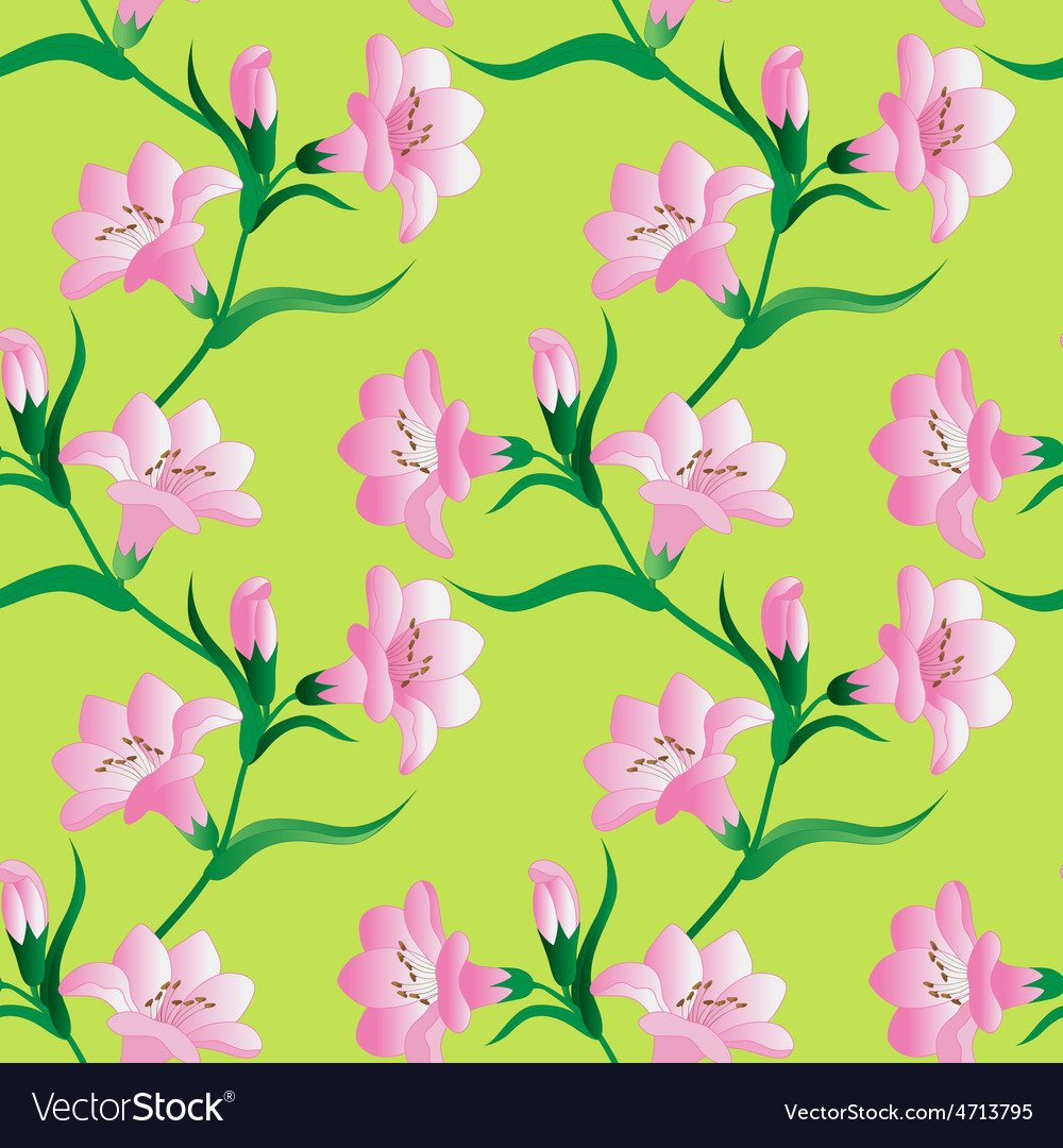 Seamless pattern with white lily flowers vector   Price: 1 Credit (USD $1)