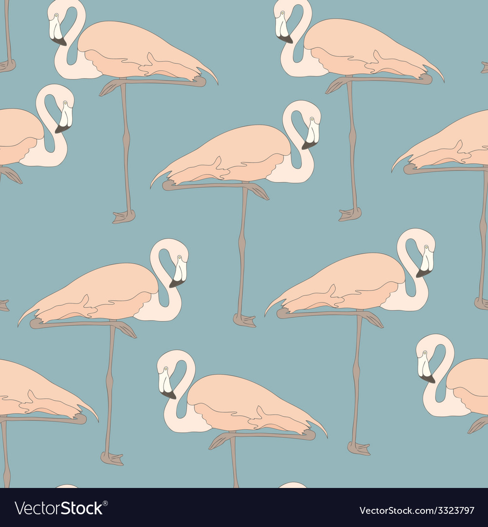 Flamingostand13 vector | Price: 1 Credit (USD $1)