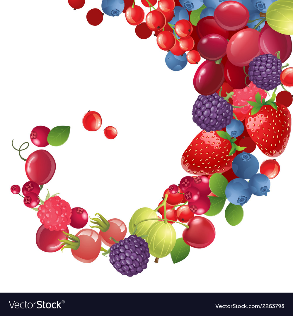 Background with berries vector | Price: 1 Credit (USD $1)