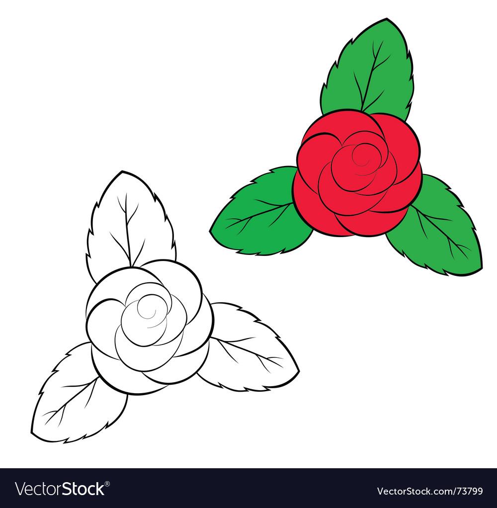 Rosa vector | Price: 1 Credit (USD $1)
