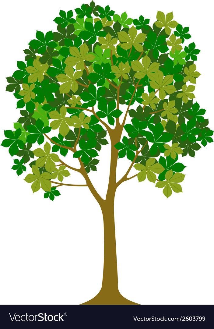 Tree designs vector   Price: 1 Credit (USD $1)