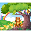 A bear under the tree with a rainbow at the back vector