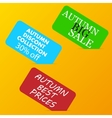 Autumn big sale color advertising paper cards on vector