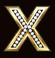 X bling vector