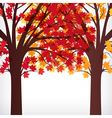 Abstract background maple tree with branches made vector