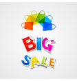 Big sale sticker title and colorful bags vector