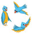 Blue birds set vector