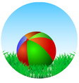 Ball is in the green grass vector
