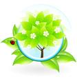 Green tree vector