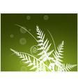Beauty fern background vector