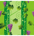Grape background vector
