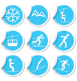 Winter sport icons9 vector