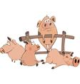 Little pigs vector
